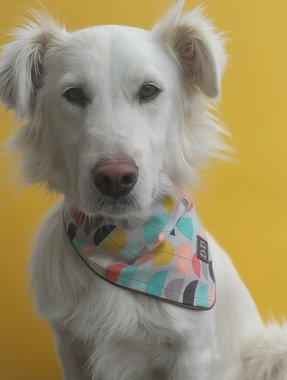 Sweet Candy bandana